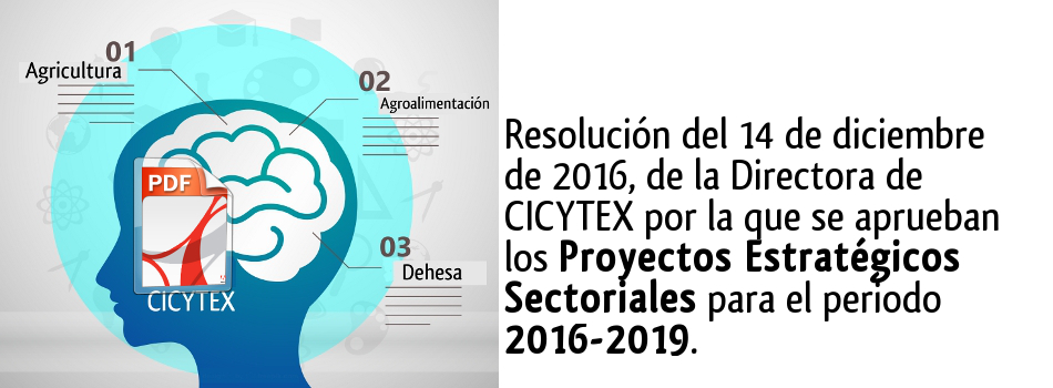Resolución de Proyectos Sectoriales  CICYTEX